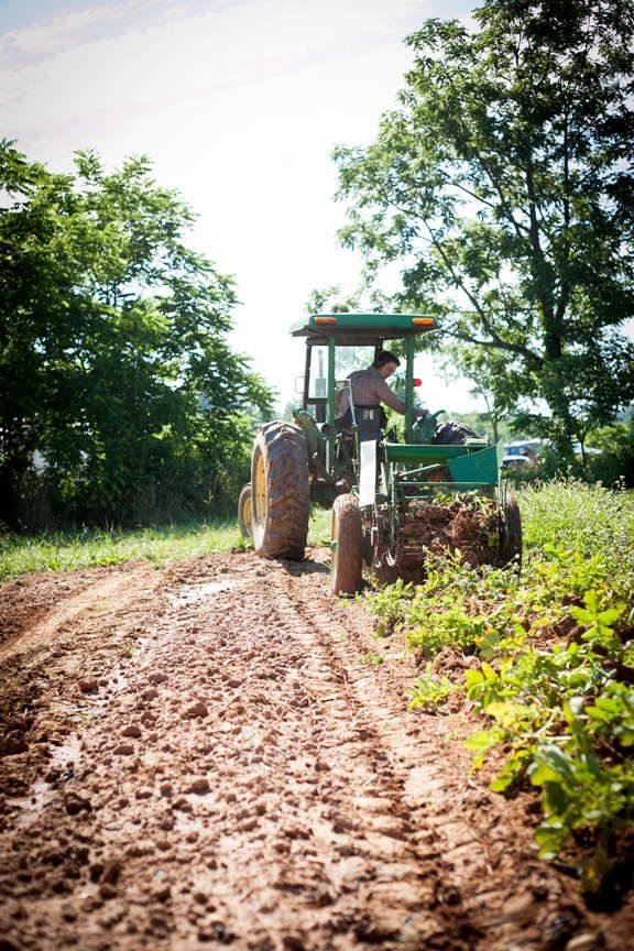 Gaining Ground Farm in Leicester, North Carolina