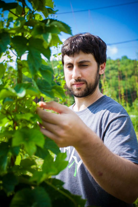 Parker Davis of Sticky Indian Hops Farm