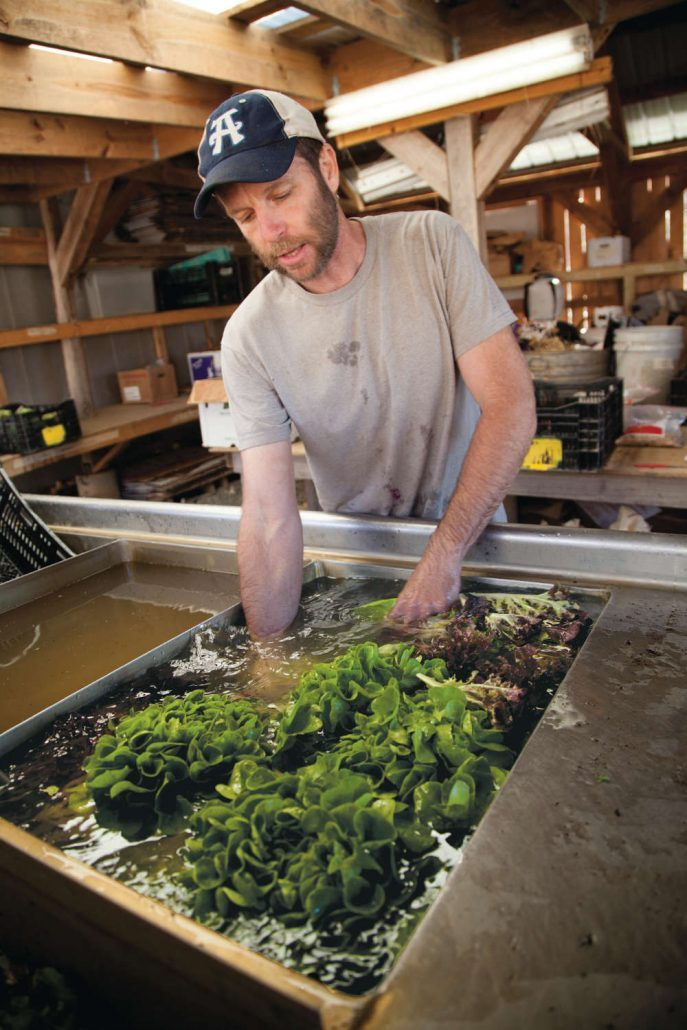 Paul Littman of Ivy Creek Family Farm