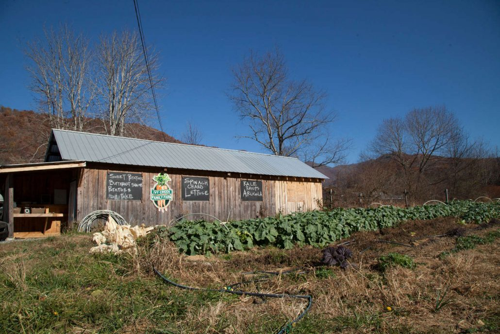 Ivy Creek Farm in Barnardsville, North Carolina