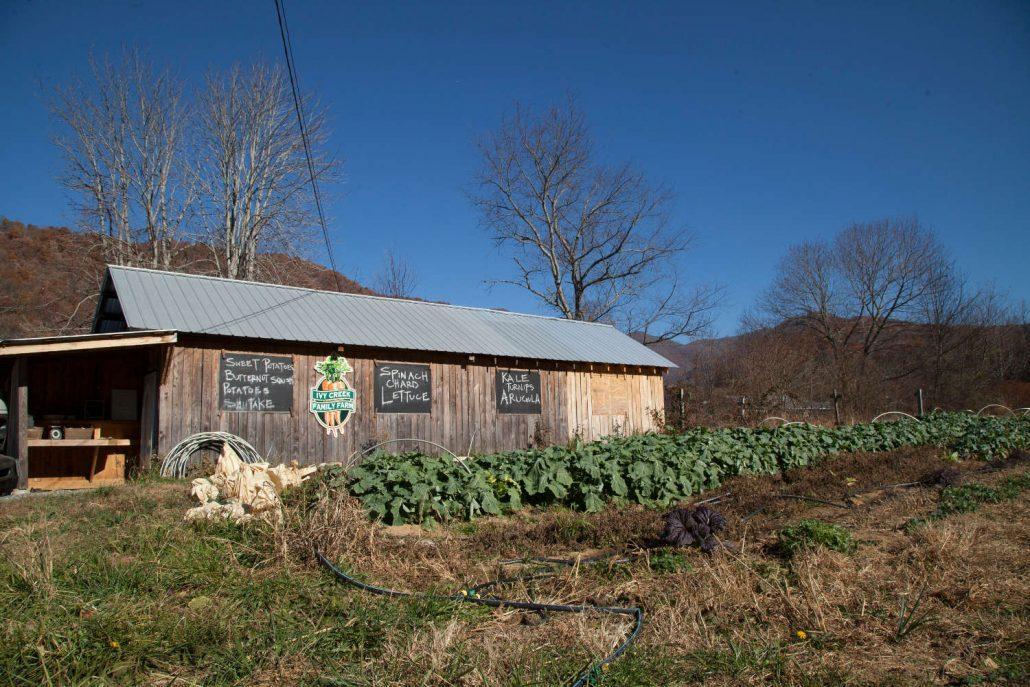 Ivy Creek Farm in Barnardsville, North Carolina